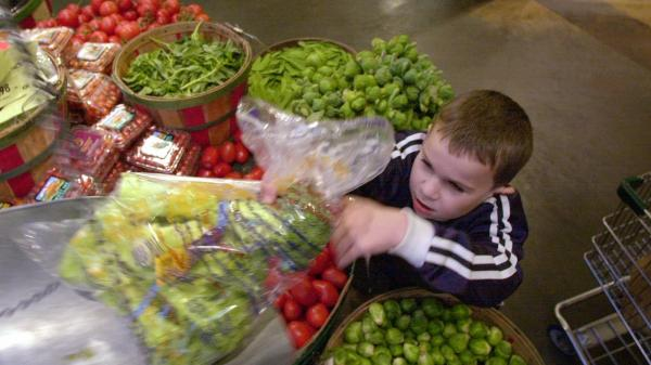 Parents now have more advice to consider when it comes to choosing organic foods. Here, Theo Shriver, 6, weighs organic produce at the Puget Consumers Co-op in Seattle.