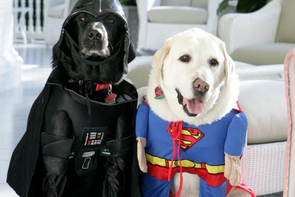 I mean, if Dick Cheney's dogs can do it, so can you. (Jackson, i.e. Darth Vader, and Dave, i.e. Superman, at the Vice President's residence in 2007.)