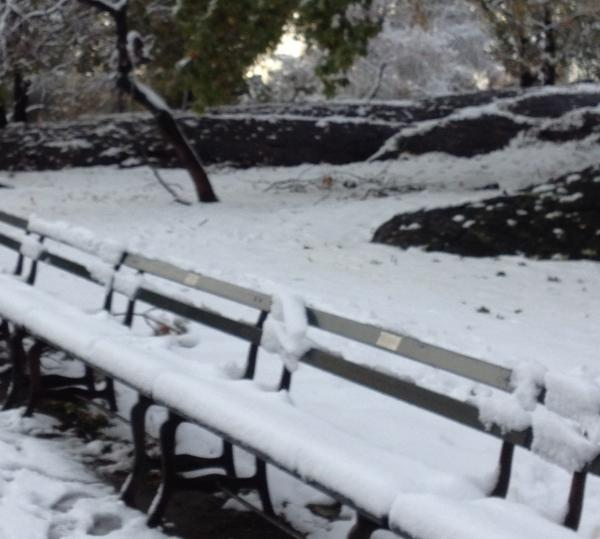 The snow this morning in Manhattan's Central Park, where several inches fell.