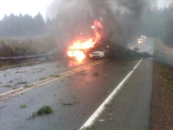 In SW Washington's Pacific County, a state trooper's car was struck by a tree at the scene of a mudslide on SR 101 on Monday.  An adjacent vehicle was also hit and both caught fire. Trooper and motorist okay. Photo courtesy Washington State Patrol