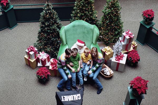 <em>Pictures with Santa,</em> 2010