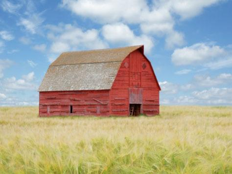 "<a href=""http://www.istockphoto.com/stock-photo-14816846-xxxl-old-red-barn.php?st=eac6419"">iStockphoto.com</a>"