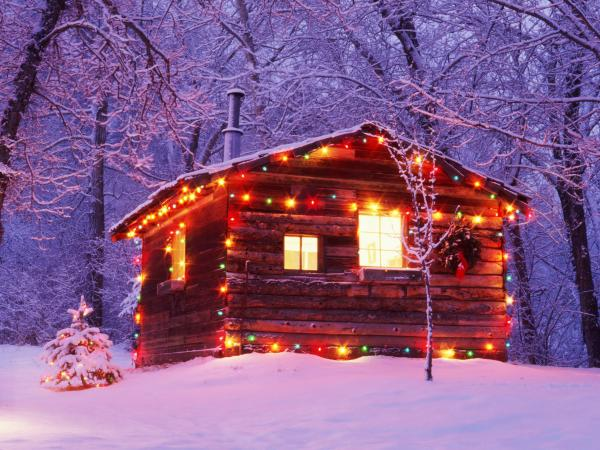 <em>All Songs Considered</em> hosts Bob Boilen and Robin Hilton rented a cabin in the woods for a special holiday party, with Kishi Bashi, Dan Deacon, Carrie Brownstein, and more as guests.