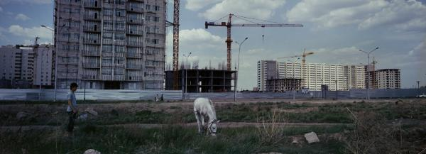Horses graze near a construction site in Astana, Kazakhstan, 2012. Astana is a growing new capital in oil-rich Kazakhstan. Kazakhstan's President Nursultan Nazarbayev moved the capital from Almaty to Astana in 1997.