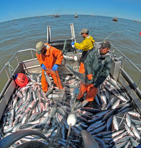 Being a fisherman was the deadliest job in 2011.