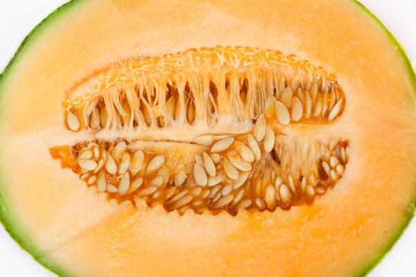 But for some trypophobes, the clusters of seeds in a melon can evoke anxiety, nervousness and even nausea.