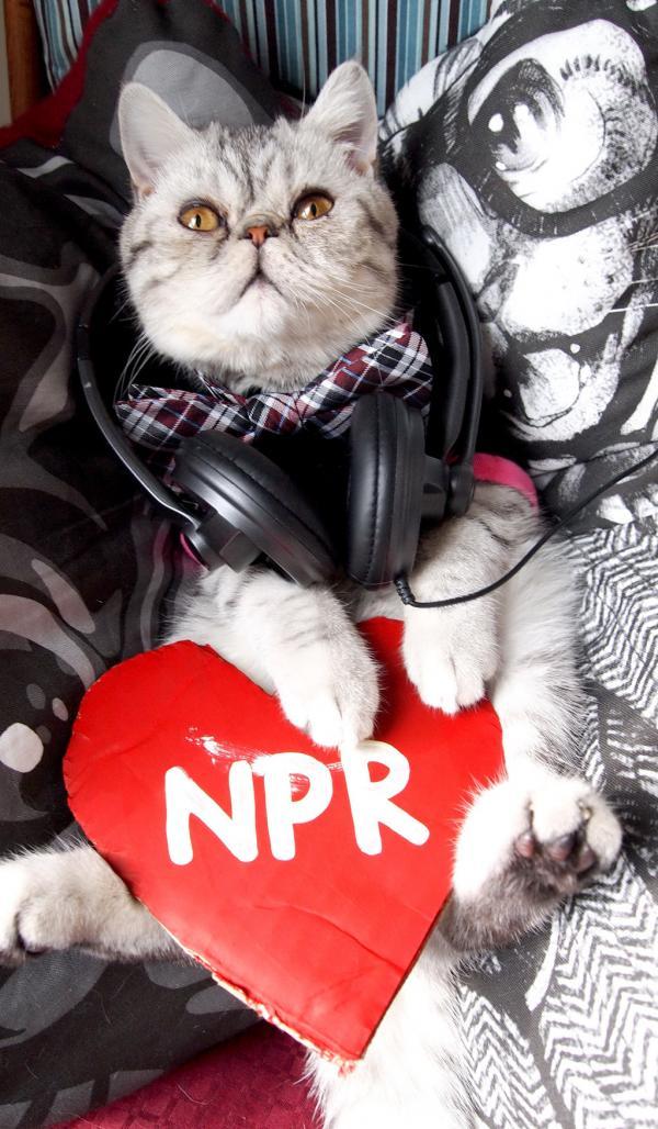 """#4: """"Mr. Eggs Benedict Hearts NPR Member Station WBHM [Birmingham, AL]."""""""
