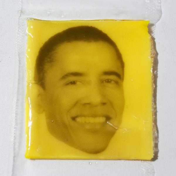 For your State of the Union address nibbling pleasure, how about some American cheese?