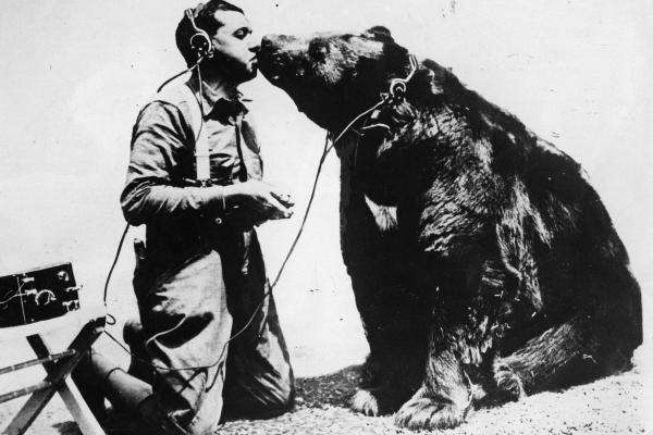 Bear hug? Bear kiss!
