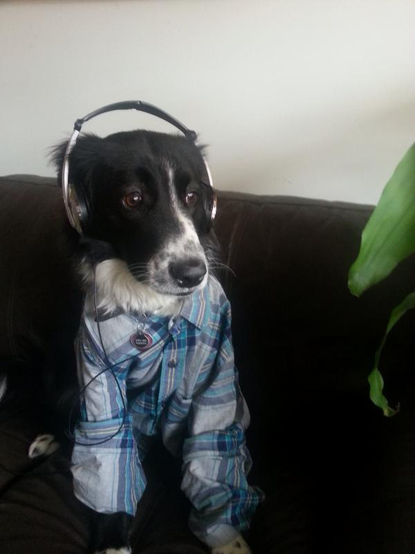 """Gus loves listening to thought-provoking shows (and fly jams) on WUNC out of Chapel Hill, NC."""