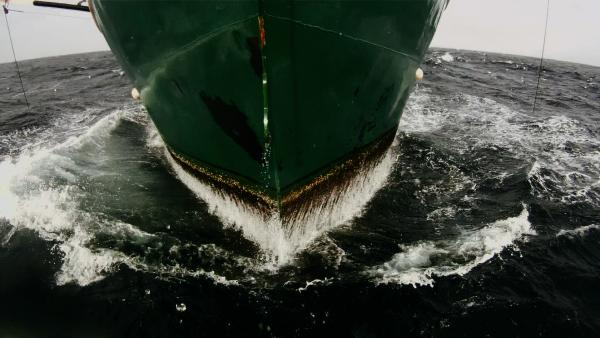 The dingy commercial fishing boats that dot the waters off the Atlantic coast of the U.S. and Canada have lives all their own in the new documentary <em>Leviathan</em>.