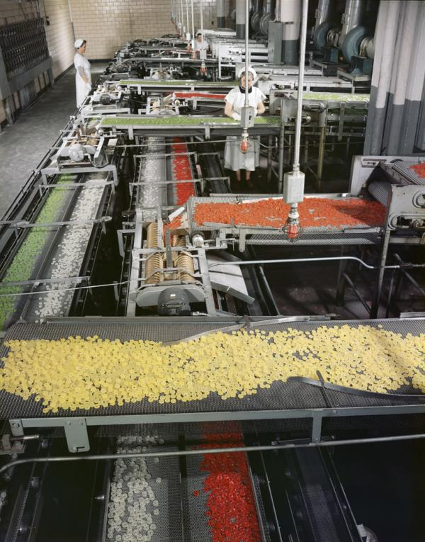 <em>Life Savers Factory, Port Chester, N.Y., </em>1956.<em> </em>Although he is most well-known for his photographs of architecture, Stoller was also often assigned to photograph stories about innovations in technology and man's relationship with machinery.