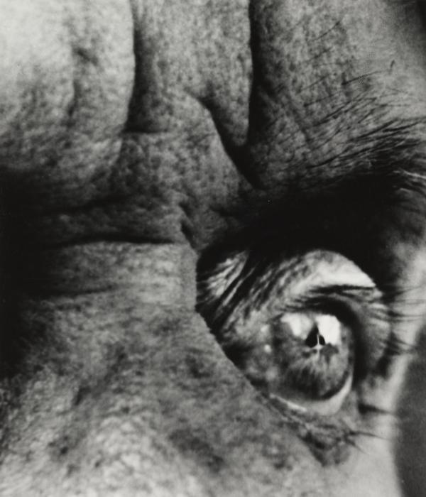 Max Ernst, 1963