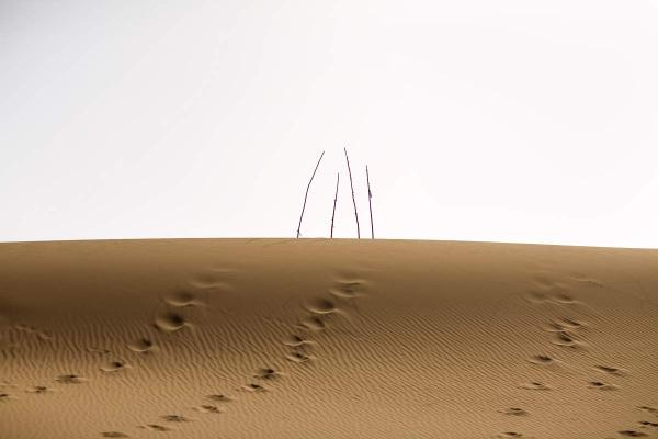 <em>Unrevealed, Site 12 (Four Branches),</em> 2009. Footprints lead up to four bare holy markers in the dunes.
