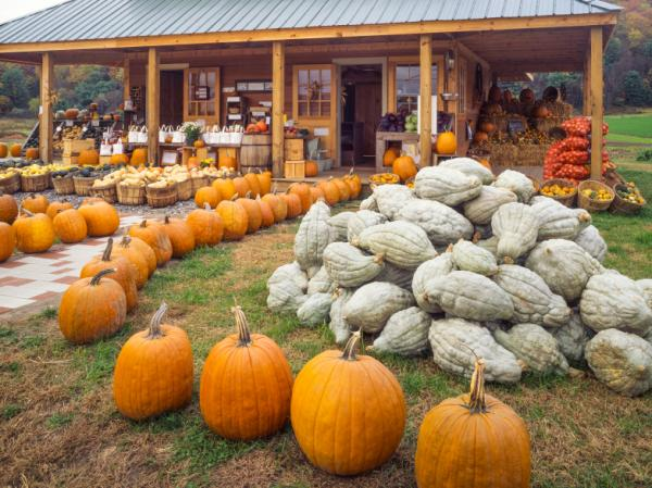 A Vermont farm stand. The state excels at getting the produce to the people.