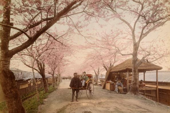 Street scene, Mukojima, Tokyo