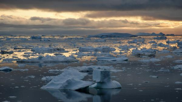 Ice on the Arctic Ocean has melted to its second-lowest level on record. Above, ice in a fjord in Greenland.