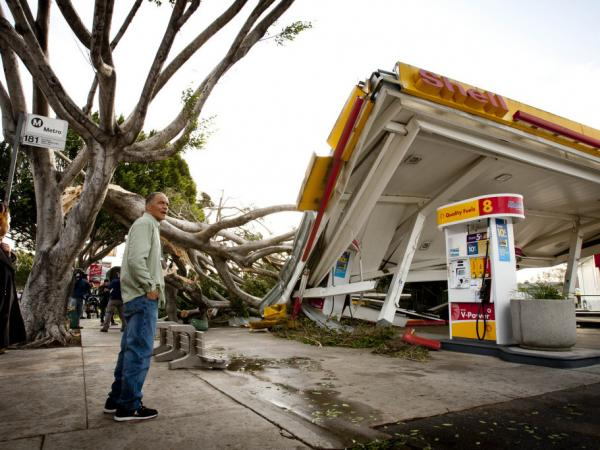Keith Curo, of Pasadena, stops to look over the damage caused by a fallen tree at a Shell gas station Thursday, Dec. 1, 2011, in Pasadena, Calif.