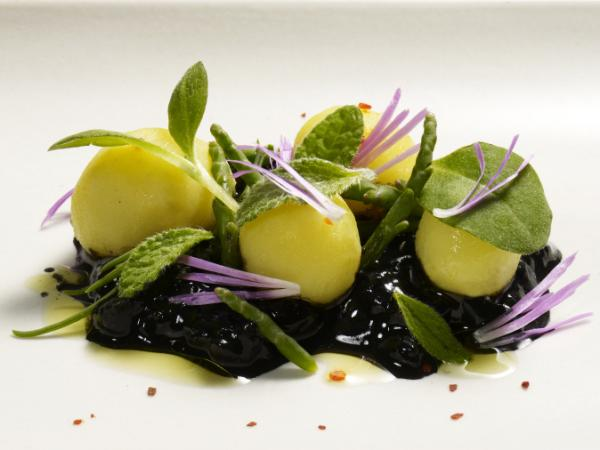 "<a href=""http://coirestaurant.com/photos/presskit/daniel_patterson_portrait.tif""> </a> <a href=""http://coirestaurant.com/presskit/daniel_patterson_portrait.tif""></a>Steamed new harvest potatoes, cucumber, borage, and ice plant flower."