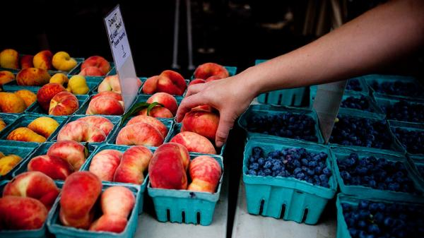 Shopper reaches for donut peaches at the Penn Quarter farmers' market in Washington, D.C.