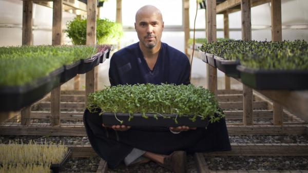 Brendan Davison grows 11 kinds of microgreens, including arugula and basil, at his Good Water Farms in East Hampton, N.Y.