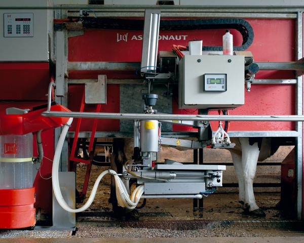 <em>Milking Robot I, 2012:</em> One milking robot milks three times per day, 60 cows. The cows are in a stable, in which they can move around freely. They can use the robot whenever they need to. No human needs to be present.