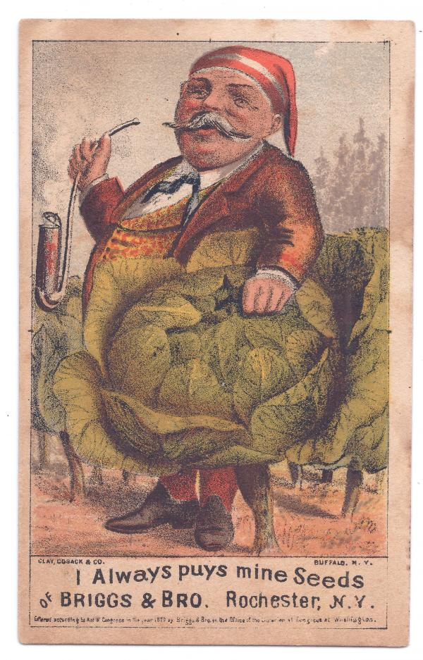 "Cabbage was, and still is, essential to Pennsylvania Dutch cuisine. This 1878 card caricatures a prosperous ""Dutchman"" with his meerschaum pipe and drumhead cabbage."
