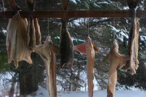 The family would dry their fish outside the kitchen window.
