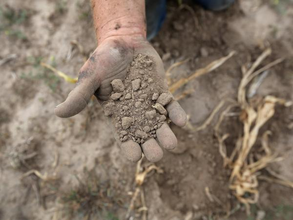Ruined topsoil in Logan, Kan., in August of last year. Drought conditions will persist in parts of the country this spring and summer, forecasters say.
