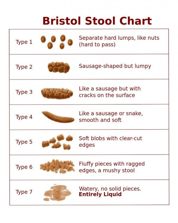 The Bristol stool chart was developed by Dr. Ken Heaton at the University of Bristol and first published in 1997.