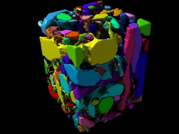 "This image represents a chunk, or ""cube,"" of brain. Each different color represents a different neuron, and the goal of the EyeWire game is to figure out how these tangled neurons connect to each other. Players look at a slice from this cube and try to identify the boundaries of each cell. It isn't easy, and it takes practice. You can try it for yourself at eyewire.org."