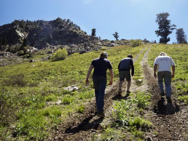 A walk up near the peak of Powder Mountain, which is about 9,000 feet elevation.