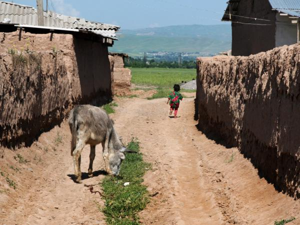 Tuberculosis tends to spread through families in rural Tajikistan, especially during the long, cold winter when many people crowd together into small mud-walled houses.