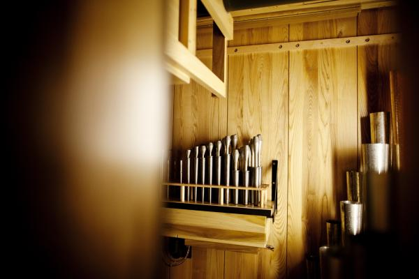 The cluster of pipes in the center are the only ones that remain from the old Filene Great Organ, installed in 1972.