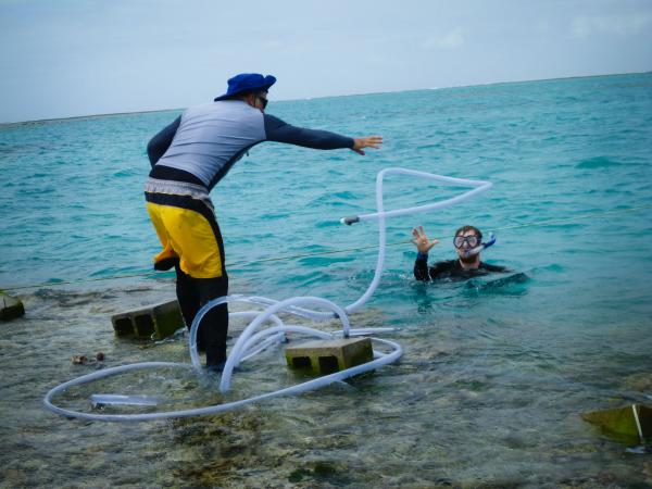 Caldeira (left) tosses some plastic tubing that will pipe in the antacid, mixed with nontoxic red dye, from a floating tank nearby to see whether the reef will grow faster under less-acidic conditions.