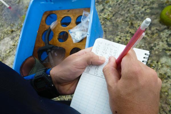 Field assistant Benjamin Cox keeps track of water samples as they are drawn from the edge of the reef. The samples will be analyzed in a chemistry lab back on One Tree Island.
