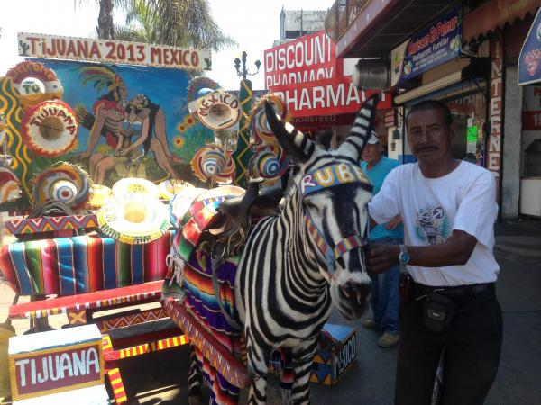 "Victor Reyes has been photographing tourists atop Tijuana's ""zonkeys"" since he was 12, and says at one time he could earn $150 a day. Now, he's lucky to earn $15, he says. Here, Reyes poses with his donkey, Ruben."