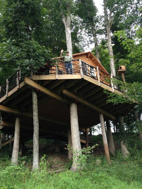 A guest looks out from one of the treehouses at Mohican Cabins in Glenmont, Ohio. (Lisa Brice via WCPN)