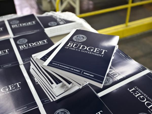 President Obama's budget plan for fiscal year 2014 may include a proposal for Medicare patients to pay more of their own medical bills.