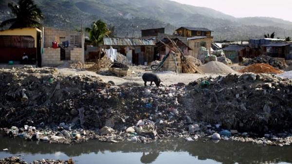 A lone pig roots through trash dumped over the side of a sewage canal that run from the center of Port au Prince through Cite de Dieu. During the rainy season, the canal overflows its banks and fills nearby houses with sewage.