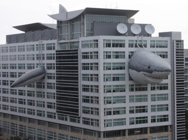 Chompie, a giant inflatable shark that measures 446 feet long, peeks out of the global headquarters building of Discovery Communications.