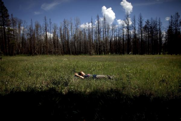 Madison Daniels, a student at Northern Arizona University, takes a short break from gathering data in a meadow in Apache-Sitgreaves. Both students and faculty live in the forest for weeks while they conduct their ecological research.