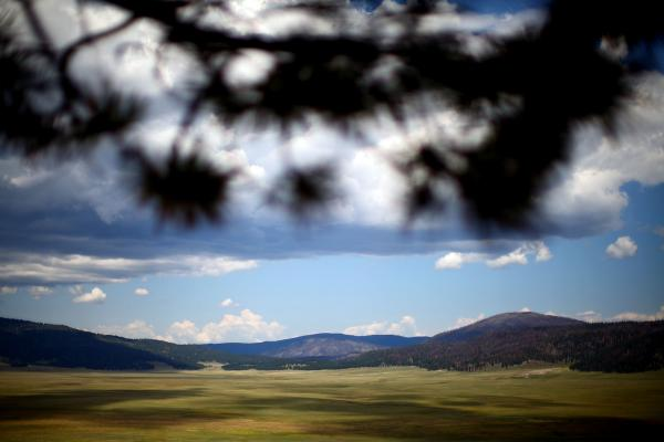 A view of the Valles Caldera. The valley served as a high-mountain pasture for ranchers for years. In the distance you can see the Santa Fe National Forest, which burned during the 2011 Las Conchas fire.