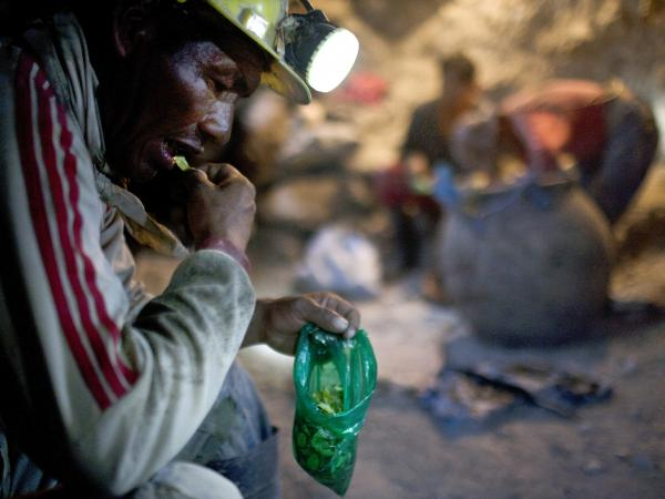 Elogio Tola, 45, a miner since he was a boy, takes a break with coca leaves, chewing bagfuls to ward off hunger and exhaustion in the Cerro Rico silver mines in Potosi on Aug. 17.