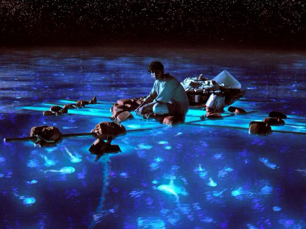 Pi takes in the bioluminescent wonders of the sea.