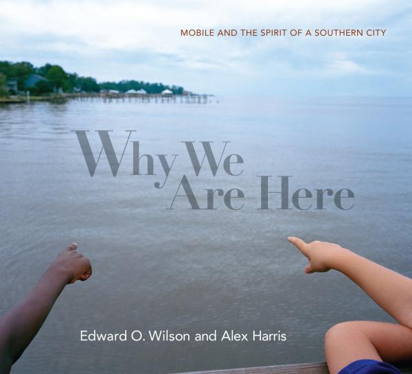 The cover of the book 'Why We Are Here' by Edward O. Wilson and Alex Harris.