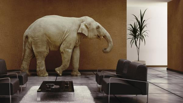 "The ""elephant in the room"" is something obvious that can't be overlooked, even if no one is talking about it. The phrase was in use as early as 1935."