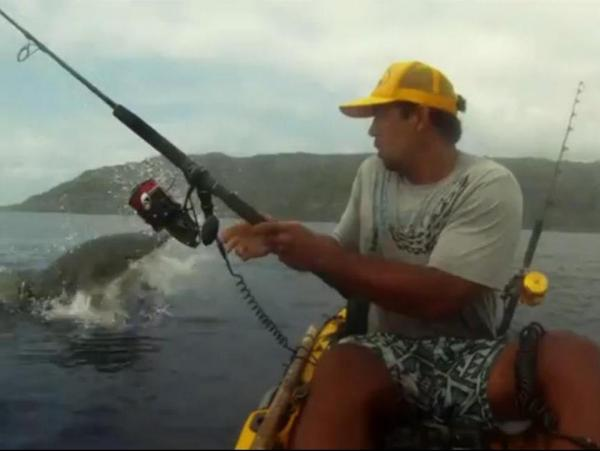 Isaac Brumaghim had his video recorder running when a tiger shark came by and grabbed his catch.