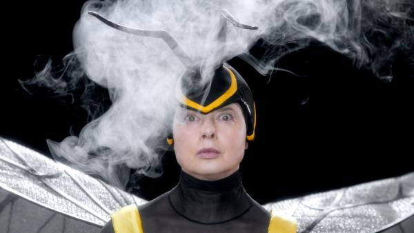 In her Web series, <em>Mammas</em>, film star Isabella Rossellini portrays animal mothers. Here, she's an oil beetle.