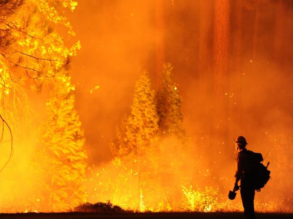 "Some of the flames Saturday as the ""Rim Fire"" spread near Northern California's Yosemite National Park."